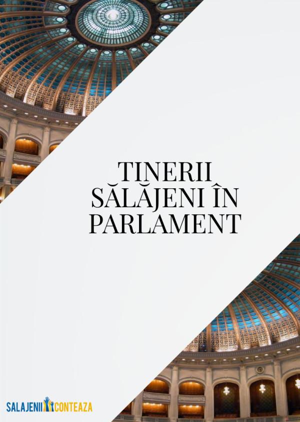 tinerii salajeni in parlamentul romaniei 2