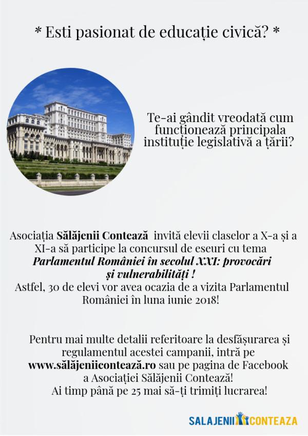 tinerii salajeni in parlamentul romaniei 3
